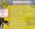 Dauphin Sécurité
