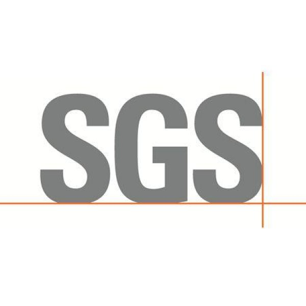 SGS Controle automobile