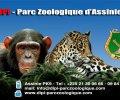 DIPI parc zoologique