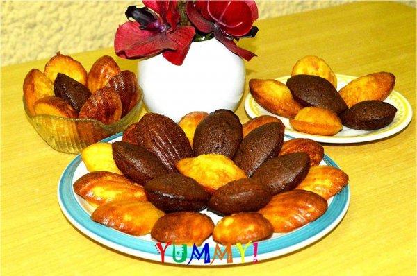 YUMMY madeleines et compagnie