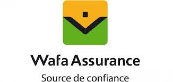 SOLIDARITE AFRICAINE D'ASSURANCES (SAFA)