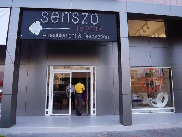 Senszo Ivoire